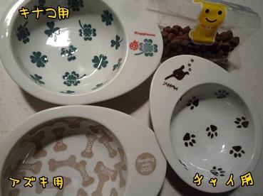food_p1109.jpg