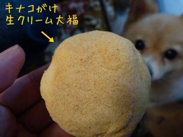 fukido111111_5.jpg