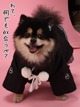 fukuchan120128_2.jpg