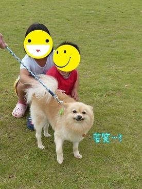 kinako111002_2.jpg