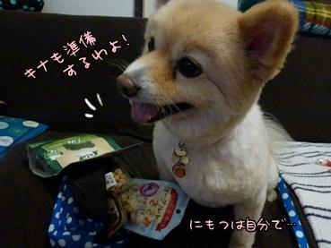 kinako120509.jpg