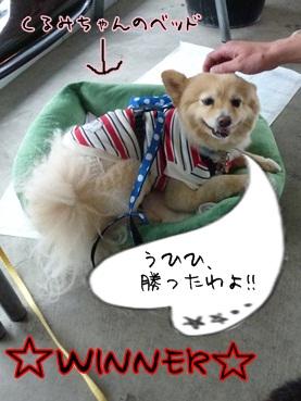 kinako120609_b.jpg