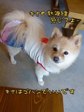kinako121010.jpg