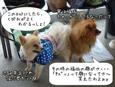 kinakoto120609_5.jpg