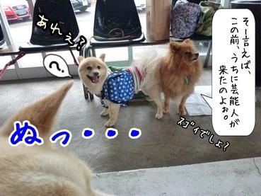 kinakoto120609_6.jpg
