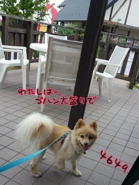kinakusatsu1206.jpg