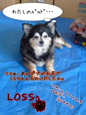 kuruchan120609_3.jpg