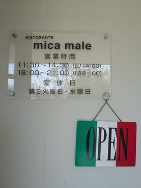 micamale2.jpg