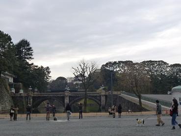 tokyo120225_6.jpg