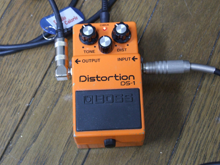 100605 DS-1