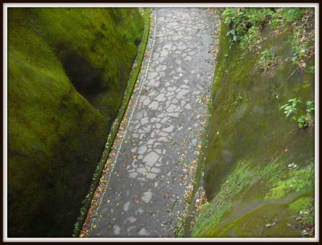 陸橋の下の小道