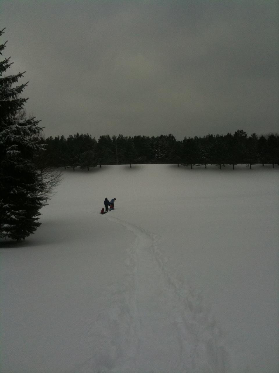 sledding5.jpg