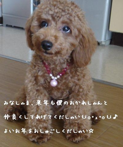 ランスIN名古屋 015コピー2
