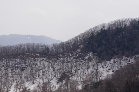 日光の山2