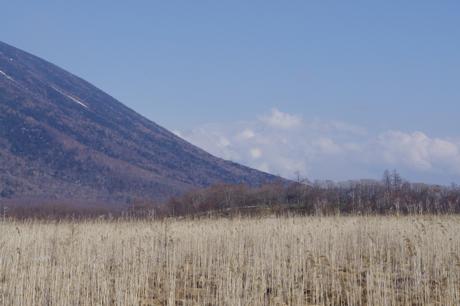 戦場ヶ原の山