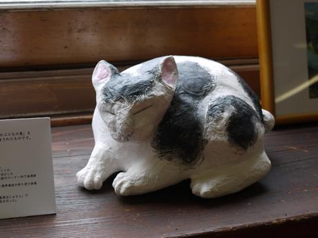 日光の猫2