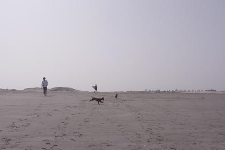 トントと砂浜