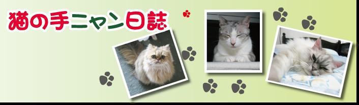 猫の手ニャン日誌