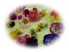 安全新鮮なお花たち