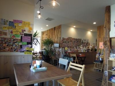 cafe6511