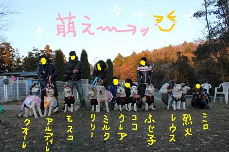 16-15_20111231004141.jpg