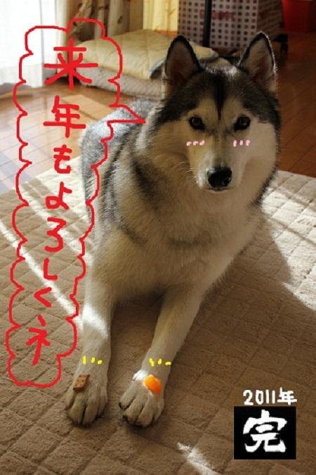 17-11_20120811030539.jpg