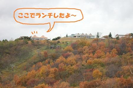 20121111008.jpg