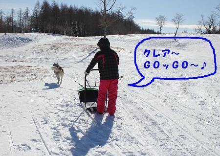 20130127009.jpg