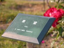 2011.11.04 DSCN0317