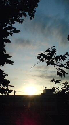 美しい(?)夕焼け