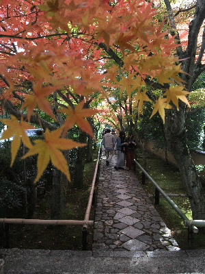 2011kyoto1st0077.jpg