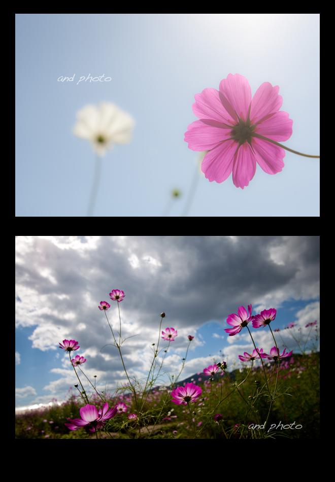 004_20111025204347.jpg