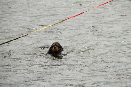 モニカちゃん、泳ぐ