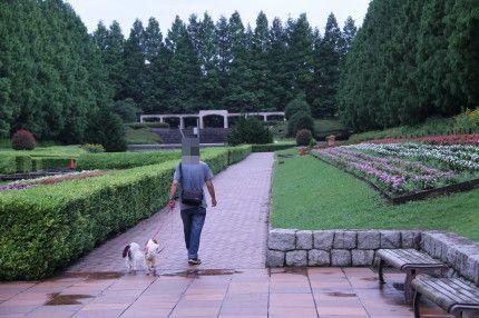 パパとお散歩嬉しいなぁ~