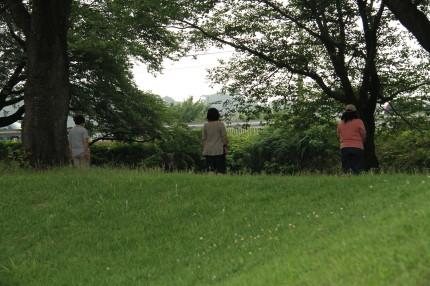 キャバズを待機させてママ達は離れた所で後ろを向いたまま待たせています