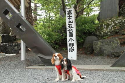 富士山五合目小御嶽神社