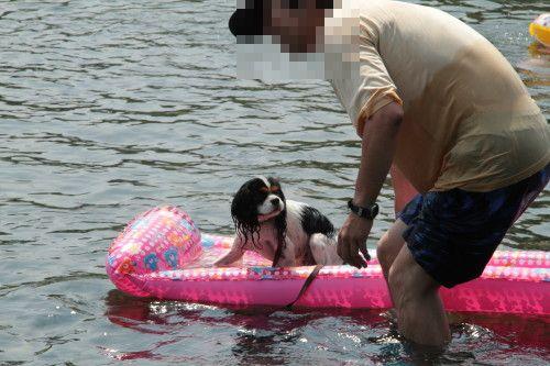 ボートに乗っているエリー