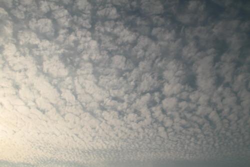 うろこ雲(いわし雲)