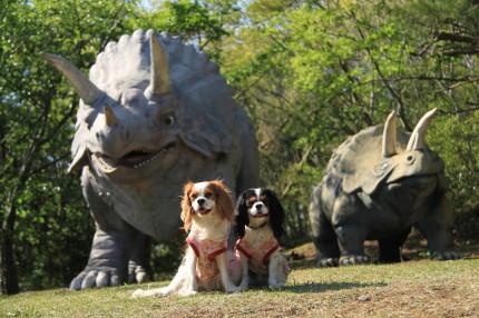 恐竜とチャコ&エリー