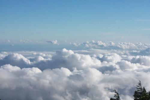 5合目から見た雲海