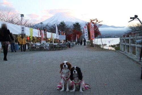 富士山をバックに。。。