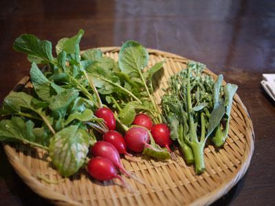 20110604野菜
