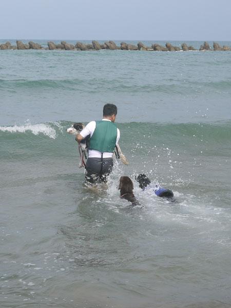 20110816海3