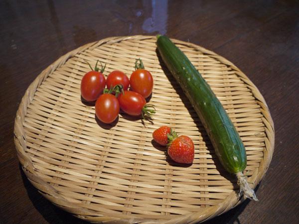 20120708収穫