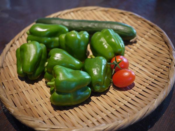 20120718収穫