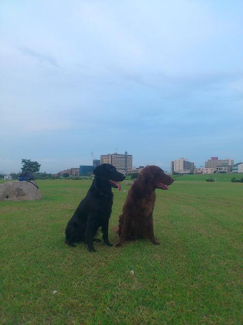 20120719お散歩2