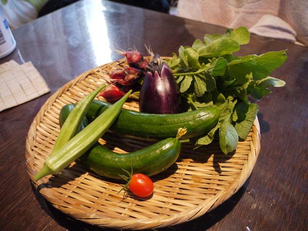20120802収穫