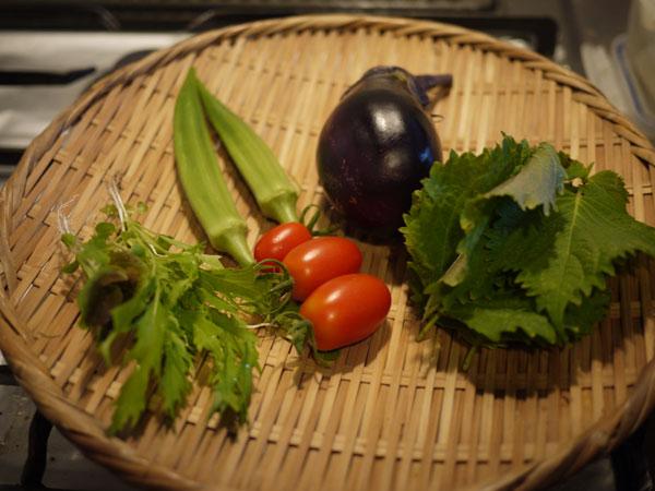 20120808収穫
