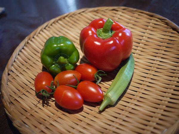 20120805収穫