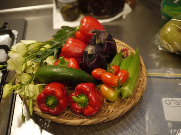 20120815収穫
